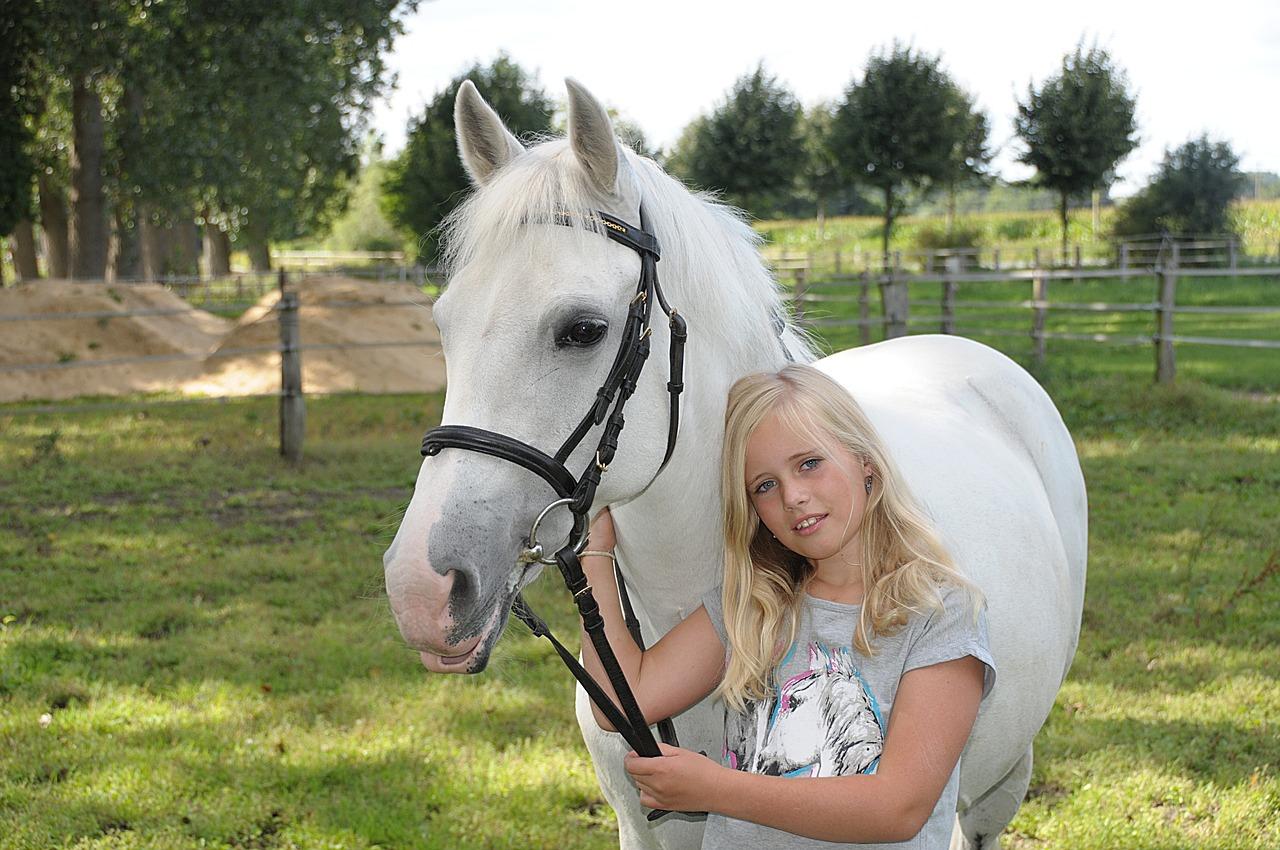 pony-1246711_1280.jpg